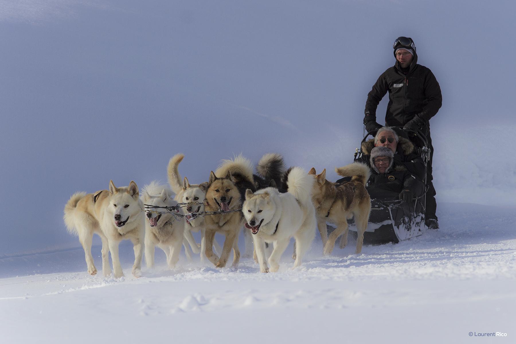 laurent-rico-production-realisation-expedition-photographe-videaste-grenoble-savoie-les arcs-val d'isere-tignes-reportage-outdoor-evenements-organisations-seminaires-chien de traineau-neige-